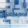 Выставки в Елань-Коленовском